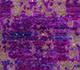 Jaipur Rugs - Hand Knotted Wool and Silk Pink and Purple CX-2414 Area Rug Closeupshot - RUG1069093