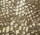 Jaipur Rugs - Hand Knotted Wool and Silk Beige and Brown NMS-02 Area Rug Closeupshot - RUG1075862